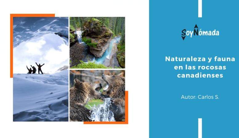 Naturaleza y Fauna en las Rocosas Canadienses