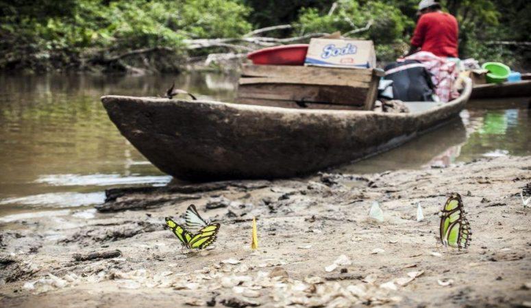 Peru-2012-Amazonas_27-900x675