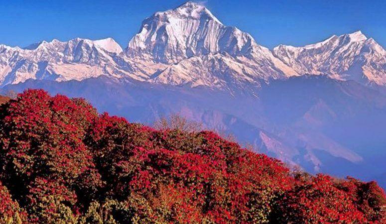 Ghorepani-nepal