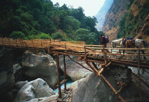 bamboo_nepal
