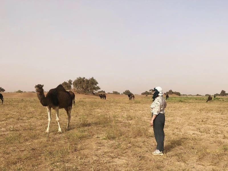 Elsa y ana - Marruecos camellos